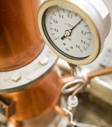 Distilling in South Devon